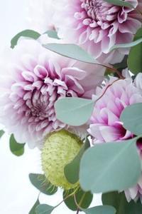 ぽっと頬染めたようなダリアで二種のブーケ - お花に囲まれて