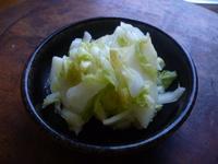 白菜とリンゴのサラダ - LEAFLabo