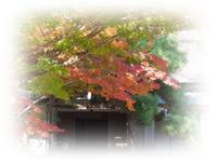 紅葉狩り日和 - ひとりあそび