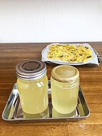 生姜紅茶 - bonco、、、ぼん子、てんてんてん