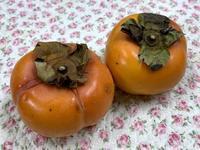 ☆柿の形・種の形☆ - ガジャのねーさんの  空をみあげて☆ Hazle cucu ☆