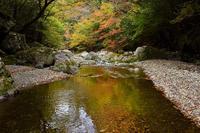 紅葉の写り込みの渓谷北股川・三ノ公川 - 峰さんの山あるき
