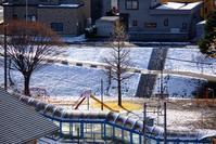 降雪で裸になった銀杏と宮川哲夫作詞「公園の手品師」 - 照片画廊