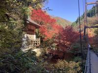 天気に誘われて兵庫県の紅葉狩り - 旅と数学  それとdiy