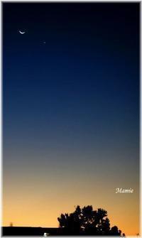朝の三日月&明けの明星&オリオン座 - おだやかに たのしく Que Sera Sera