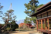 藤田記念庭園を秋さんぽ_2020.11.12撮影 - 弘前感交劇場