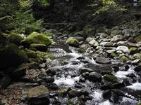 『釜ヶ滝(行者の滝と三の滝)の散策~』 - 自然風の自然風だより