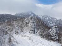 ひと足先に雪景色を・・黒岳ロープウェイに乗って! - 十勝・中札内村「森の中の日記」~café&宿カンタベリー~