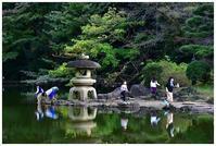 ザリガニ採りを楽しむ日本庭園 -  one's  heart