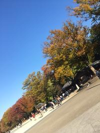☆近場の観光☆ - 上野 アメ横 ウェスタン&レザーショップ 石原商店