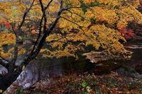 八幡平市松川渓谷五葉沼の紅葉後半 - 日本あちこち撮り歩記