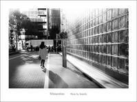 花を見る女性 - Minnenfoto