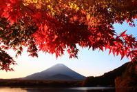 令和2年11月の富士(6)精進湖のモミジと富士 - 富士への散歩道 ~撮影記~