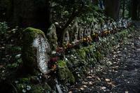 慈光寺20201115 - Yoshi-A の写真の楽しみ