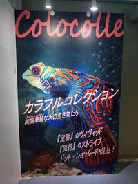 名古屋港水族館~特別展「カラフルコレクション」【前編】 - 続々・動物園ありマス。