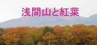 浅間山と紅葉 - 花を追いかけて