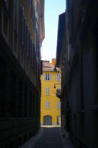 muro giallo (yellow wall) - S w a m p y D o g - my laidback life