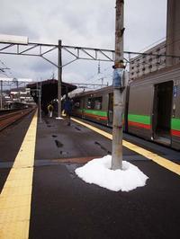 11月14日今日の写真 - ainosatoブログ02
