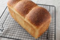 まもなく始まります!! - launa パンとお菓子と日々のこと