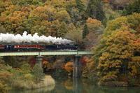 楽しんで秋撮影 - 蒸気屋が贈る日々の写真-exciteVer