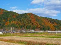 初冬の耕作地 - 飛騨山脈の自然