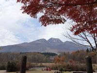 信州紅葉旅(5) ~妙高山と海鮮丼~ (2020/11/6撮影) - toshiさんのお気楽ブログ
