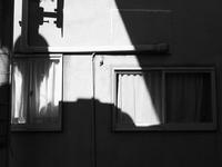 白い壁と白いカーテン - 節操のない写真館