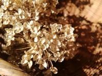 秋枯れリース… - 侘助つれづれ