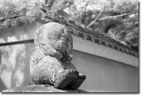 南禅寺から - Hare's Photolog