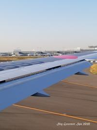 ◆ 北陸へ「カニ、ブリしゃぶ」その3、到着編@小松空港(2020年11月) - 空とグルメと温泉と