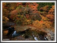 四季の里橋とおかね道橋からの紅葉 - キルトとステッチ時々にゃんこ