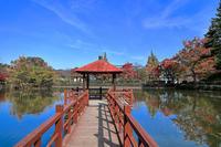 島田市中央公園の紅葉 - やきつべふぉと