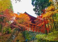 比叡山延暦寺の名跡がいまの世にも - ライブ インテリジェンス アカデミー(LIA)