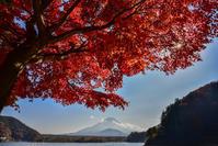 精進湖の紅葉 - 風とこだま