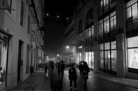 misty rain - S w a m p y D o g - my laidback life