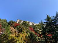 有馬温泉2 - カンパーニュママの一眼レフ生活とポメプーころすけと日々の出来事日記