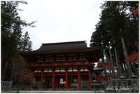 高野山金剛峯寺① - 今日のいちまい