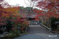 亀岡の紅葉 Part II - YOSHIの日記