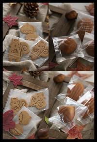 11月lessonレポ - *sheipann cafe*