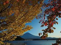 富士山秋の河口湖畔 - 風の香に誘われて 風景のふぉと缶