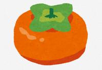 柿「味薄いです、食感微妙です、タネでかいです」←こいつが天下取れなかった理由www - フェミ速