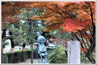 「紅葉と松のコラボ」が特選に選ばれました\(^o^)/ - 自然のキャンバス