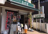 自然堂にて、お野菜たっぷりスープカリー - テリトリーは高松市です。
