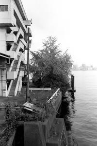 海辺橋を渡る - 散歩と写真