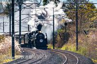 SLぐんまみなかみを撮ってきた - Salamの鉄道趣味ブログ