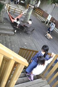 富士マリオットホテル山中湖に泊まる⑨ 〜ハンモックカフェから渋滞へ〜 - 旅するツバメ                                                                   --  子連れで海外旅行を楽しむブログ--