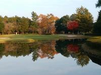 11月21日  連休1日目  朝ん歩は水元公園へ - マルコの日記