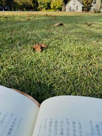本を読んだり昼寝をしたり。新宿御苑の魅力 - くちびるにトウガラシ
