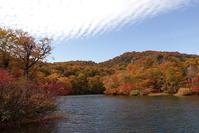 小谷村鎌池の紅葉その2 - 日本あちこち撮り歩記