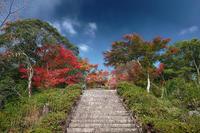 2020京都の紅葉・亀岡千手寺 - デジタルな鍛冶屋の写真歩記